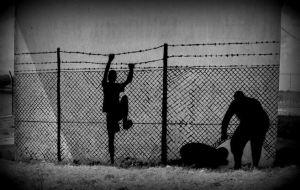 freedom, chekos'art
